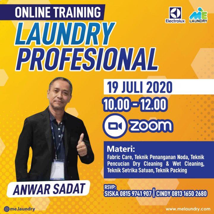 Online Training Laundry Profesional